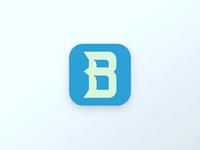 Bolster logo design.
