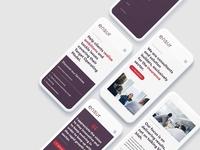 Webdesign for Ensur