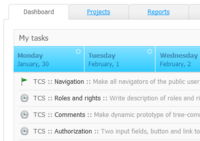 Dashboard of online projects manager