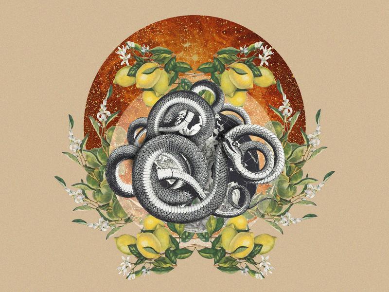 The Eternal Transition plants black artwork digital art composition earth universe lemons collageart collage snake