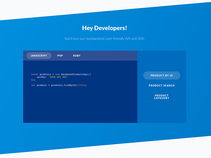 ABOUT YOU CLOUD - BACKBONE ui desktop website preview code developer blue console