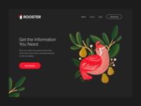 #DailyUI - Rooster news dark logo ui design visual illustration page landing