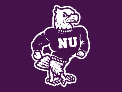 Niagara University Purple Eagles