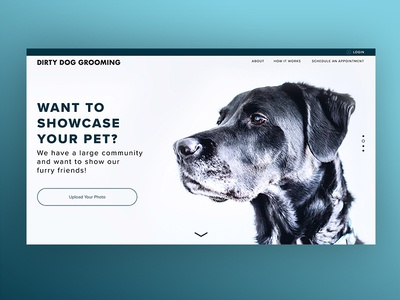 Dirty Dog Grooming Landing Page