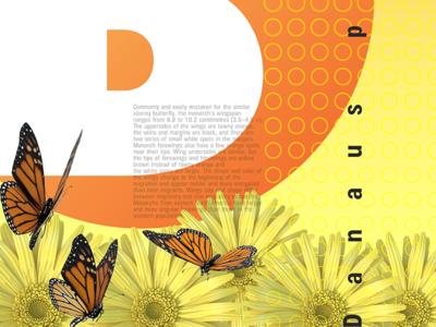 Butterfly tim tourtillotte orbital visual llc poster art poster minnesota butterfly nature branding thefuturchallenge typography
