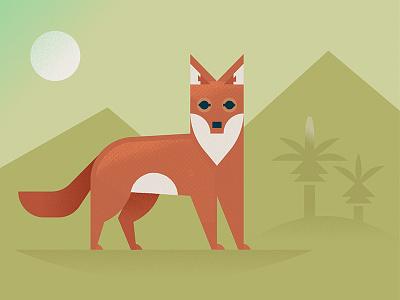Ethiopian wolf illustration dog animal endangered africa orange red ethiopia wolf