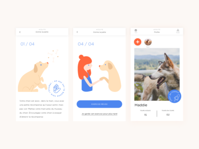 Acolyte 🐶 illustration training dogs dog app application