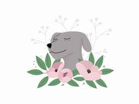 Dog's year