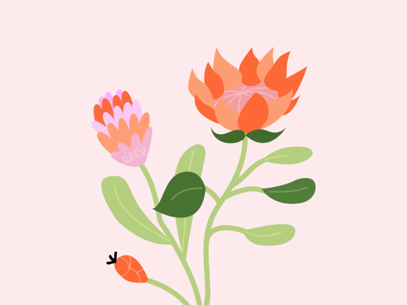 Say it with flowers 💐 mood happy pink leaf plant flowers flower vector design colors illustration graphisme