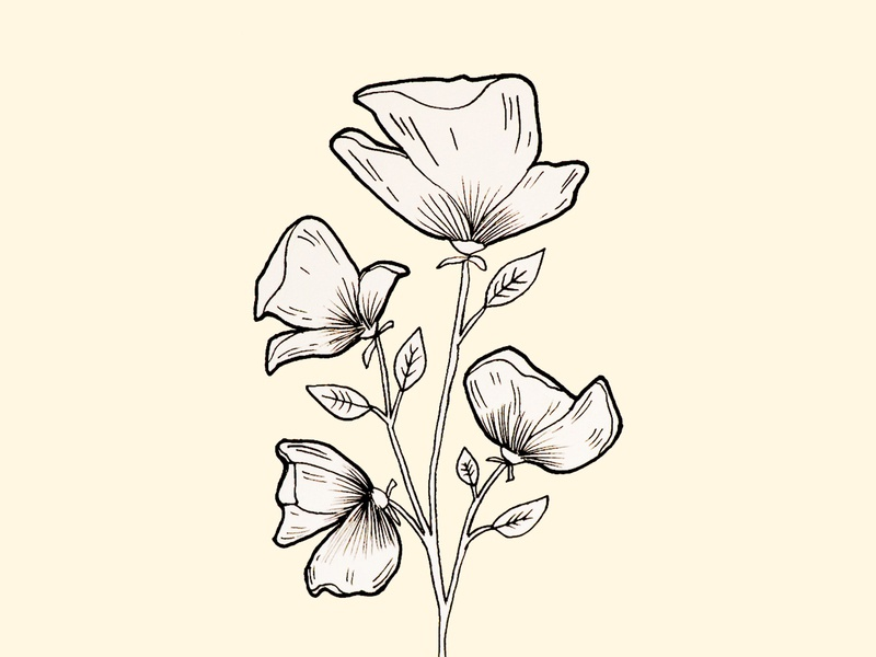 Inktober flower