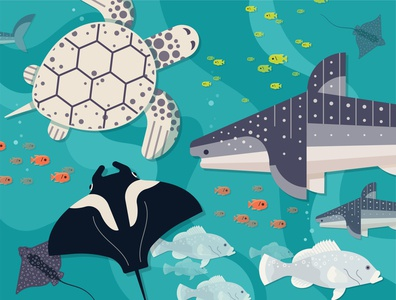 Ocean Voyager Puzzle Illustration puzzle ray turtle tank whale shark fish vector atlanta simple illustration minimal