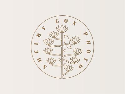 Shelby Cox Photography Logo lineart monoline hawk photoshop photography kestrel century plant agave typography marketing icon vector logomark branding digital design logo simple illustration minimal