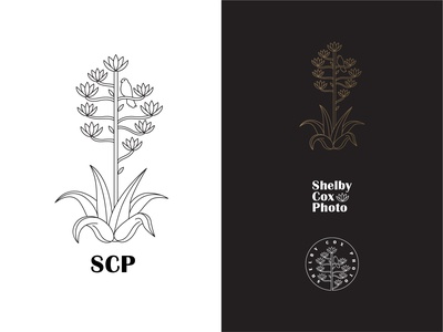 Shelby Cox Photography Logo Pack