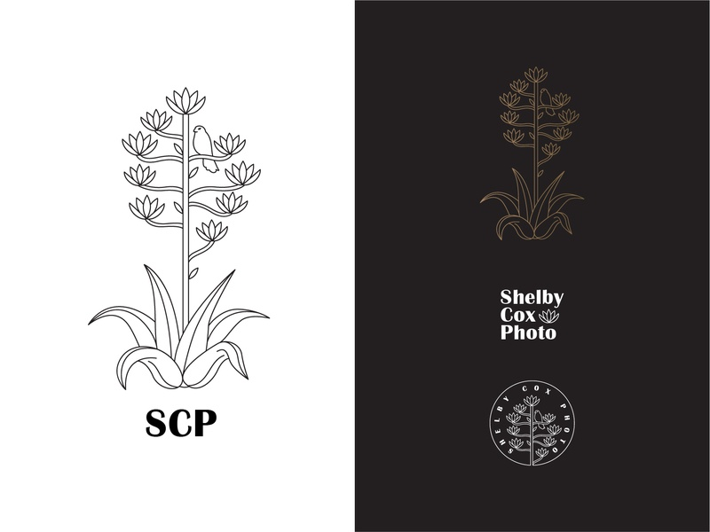 Shelby Cox Photography Logo Pack photography logo photography west texas big bend texas century plant agave kestrel typography vector logomark branding digital design logo simple illustration minimal