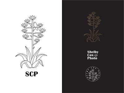 Shelby Cox Photography Logo Pack photography logo photography west texas big bend texas century plant agave kestrel typography vector logomark branding digital design logo simple illustration minimal