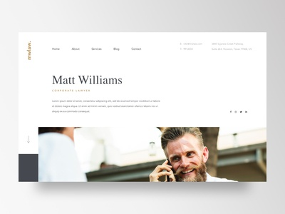 Lawyer website concept