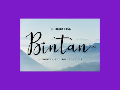 Bintan – Dazzling Script Font font script