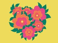 Rosa [2]