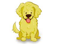Daisy For Social Dog Examiner