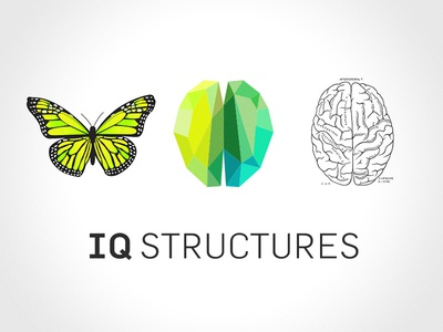 IQ STRUCTURES / idea behind the logo