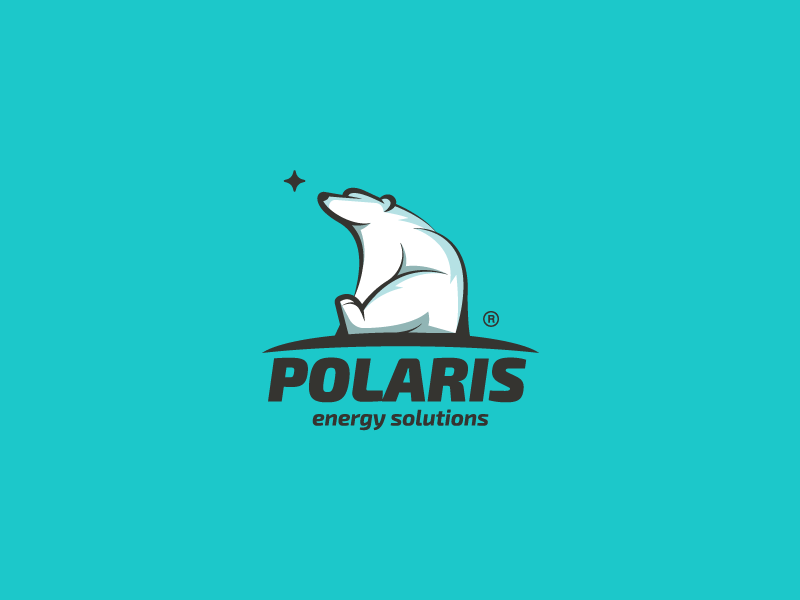 Polaris white star polar mark logotype logo illustration energy design branding bear animal