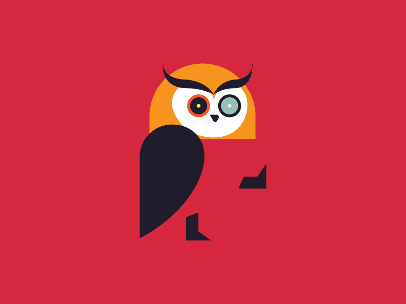 A logo design for creative platform bird animal logo colorful owl