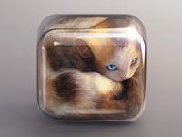 Kitten Icon