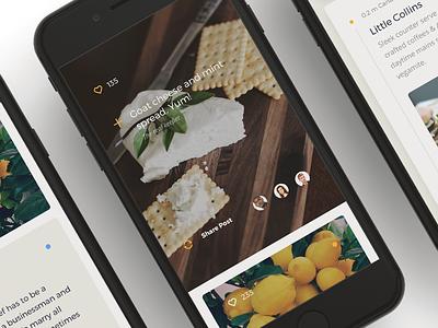 Foodie App Exploration clean product ratings dining food ui design design app ios ui ux