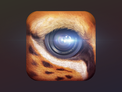 Primal cheetah fur lense editing illustration graphic design graphics icon design icons icon video cat app