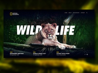 Wild Life Web Page Design :)