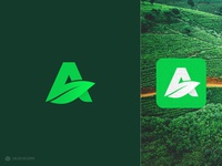 A Leaf Vol. 1 Logo Design