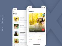 UI Exploration - iphone X