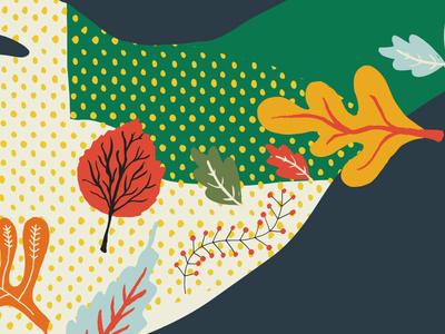 Illustration snippet