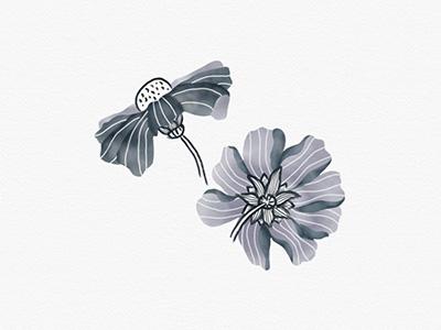 Digital Floral Illustration line digital design painted illustration watercolor flower floral