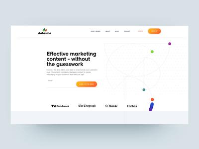Datasine - Website Redesign motion design ux branding vector illustration website design ui animation