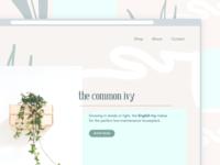 planterly   website landing