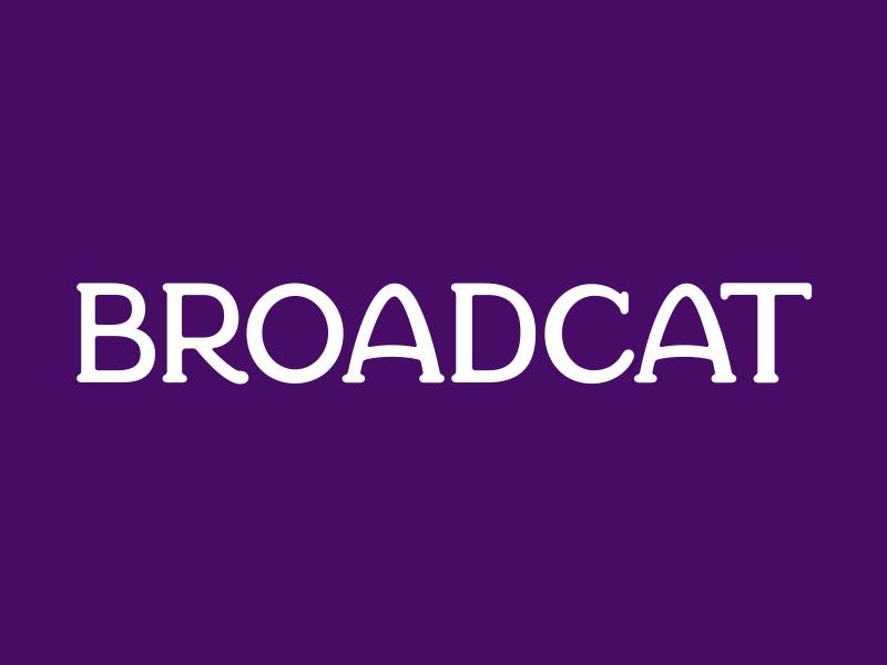 Broadcat wordmark typography lettering custom type wordmark logo
