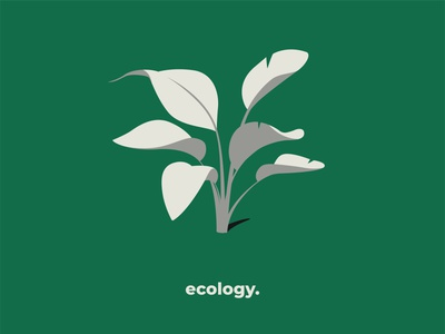 Ecology series visual instagram agency values white green ecology drawing illustrator colors illustration art flat illustration art design vector leaf plant illustration plants