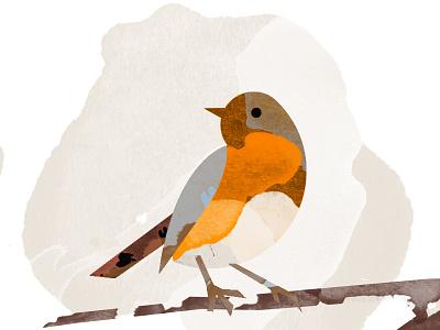 Bird Illustration app sketch photoshop 2d