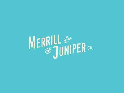 Merrill & Juniper vector typography illustrator illustration logo branding