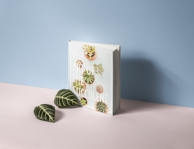 Succulent Book Cover Concept