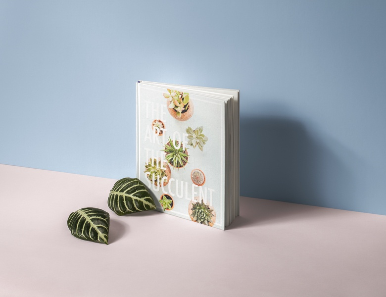 Succulent Book Cover Concept book mockup mock-up cute plants plant succulents succulent book cover book design minimalist minimal design simple minimal