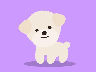 Poodle puff maltese mutt sheep fluffy puppy cute diamondho illsutration dog poodle