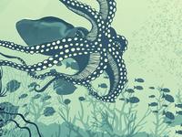 Sceneries Illustrations - Underwater