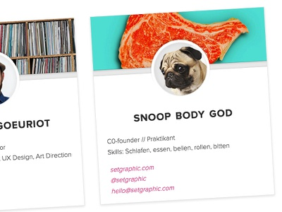 Snoop Body God contact form website avatar email mail animal form ui dog pugs card contact