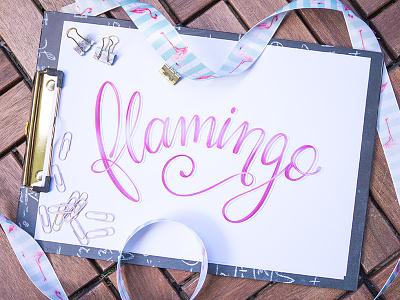 Flamingo brushlettering flamingo lettering handlettering