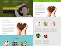 Rich Trees Marketing - Website