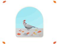 Autumn Pigeon