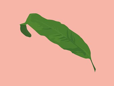 Blue star leaf botanical foliage vector illustration