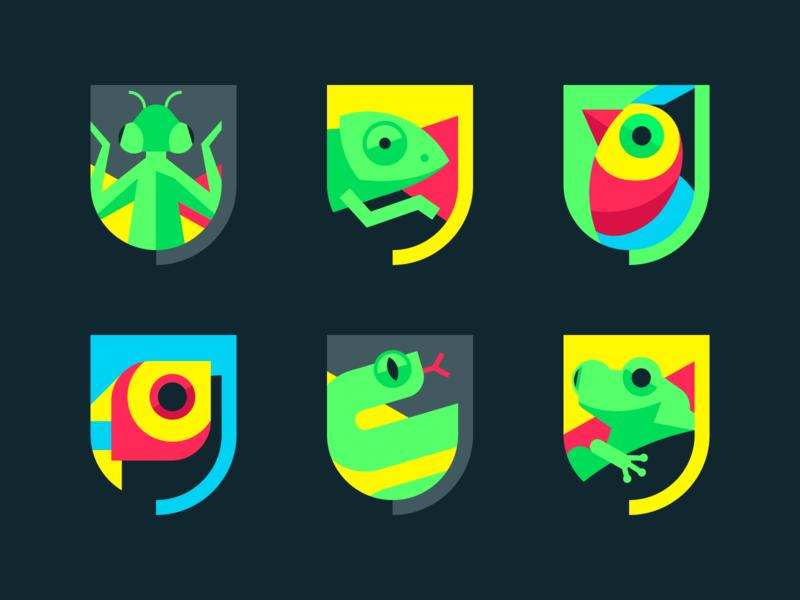 Urban Jungle Shields bird parrot chameleon snake frog animal reptile shield colourful branding logo web ux ui illustration jbdotco fortnight fffabs